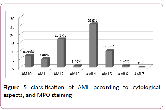 Clinical-Laboratory-MPO-staining
